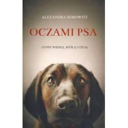 OCZAMI PSA - ALEXANDRA...