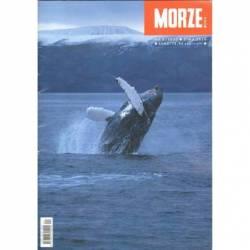 MORZE.ORG NR 4/2020 ZIMA